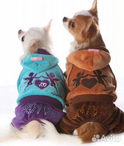 Комбинезон велюровый для собак новый