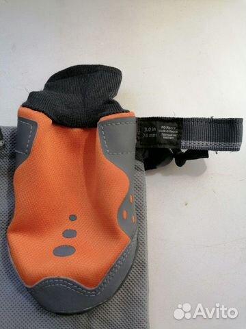 Ошейник. Обувь для собак  89521832456 купить 8