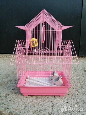 Клетка для попугая  89248296058 купить 3
