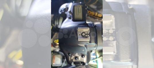 Canon EOS-1Ds mark II купить в Пермском крае с доставкой   Бытовая электроника   Авито