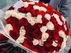 101 Роза, букеты Цветы 31 51 75 201 301 доставка