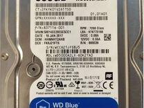 WD HDD 500Гб — Товары для компьютера в Краснодаре