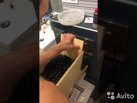 Дробилка для винограда, пресс, соковыжималка  89081573100 купить 2